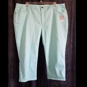Capri Pants Light Green St John's Bay NWT